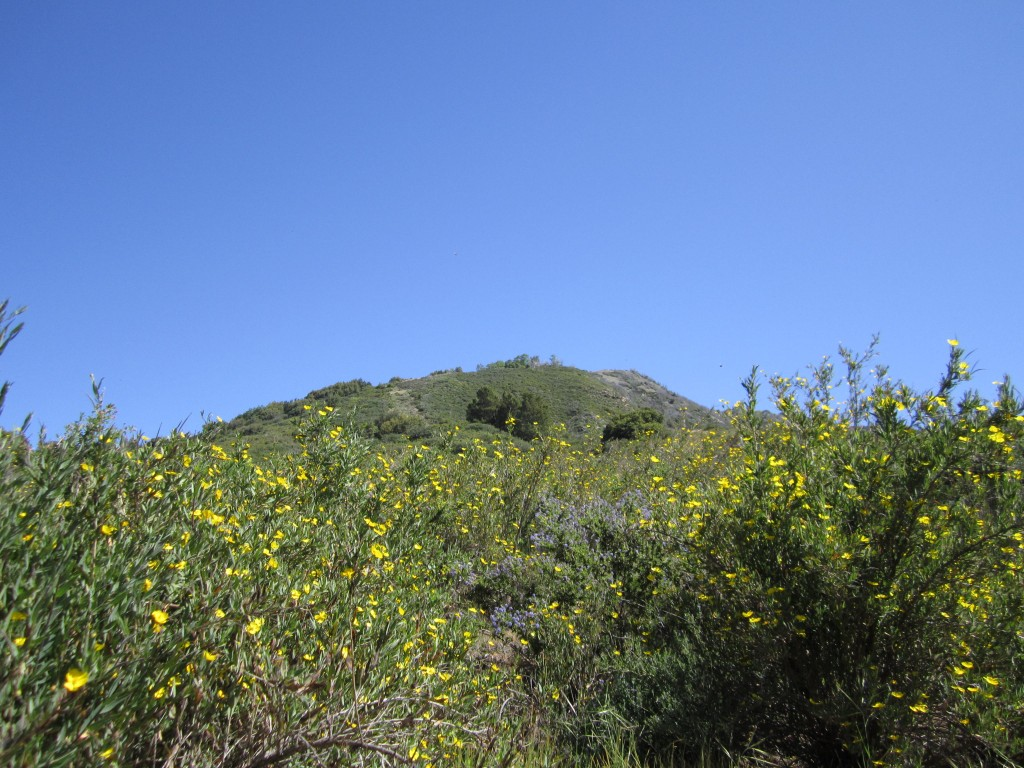 The climb to Devil's Peak