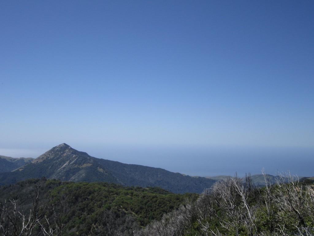Pico Blanco