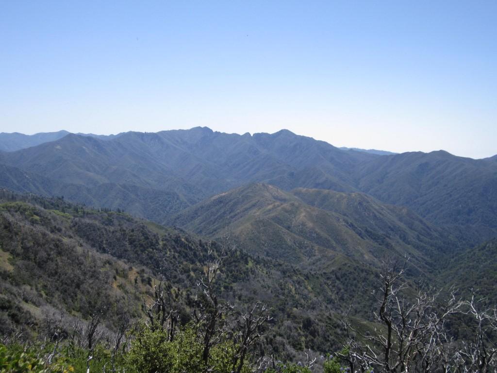 Ridge vista