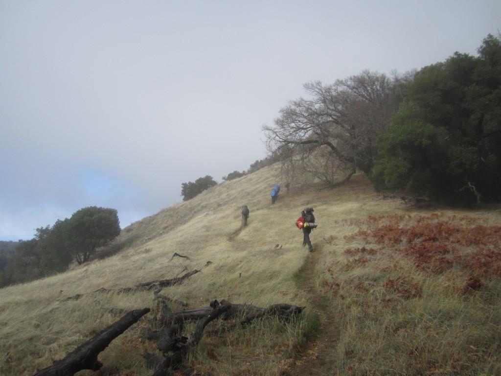 Hiking up to Devil's peak