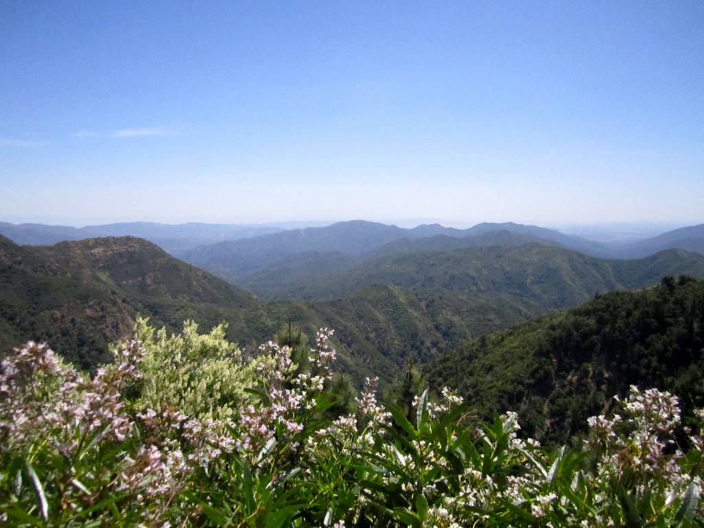Looking east from the Cone Peak road