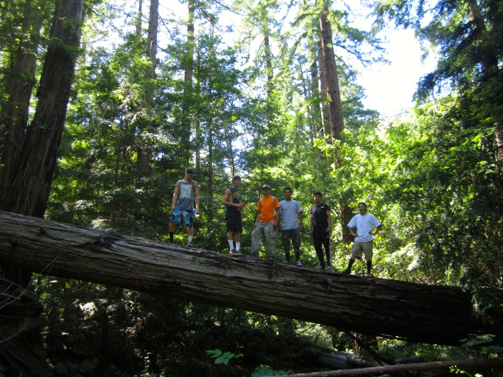 Redwood Exploration