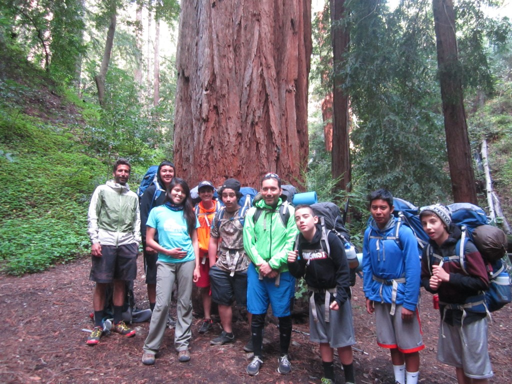The crew under a giant coast redwood, Terrace Creek camp