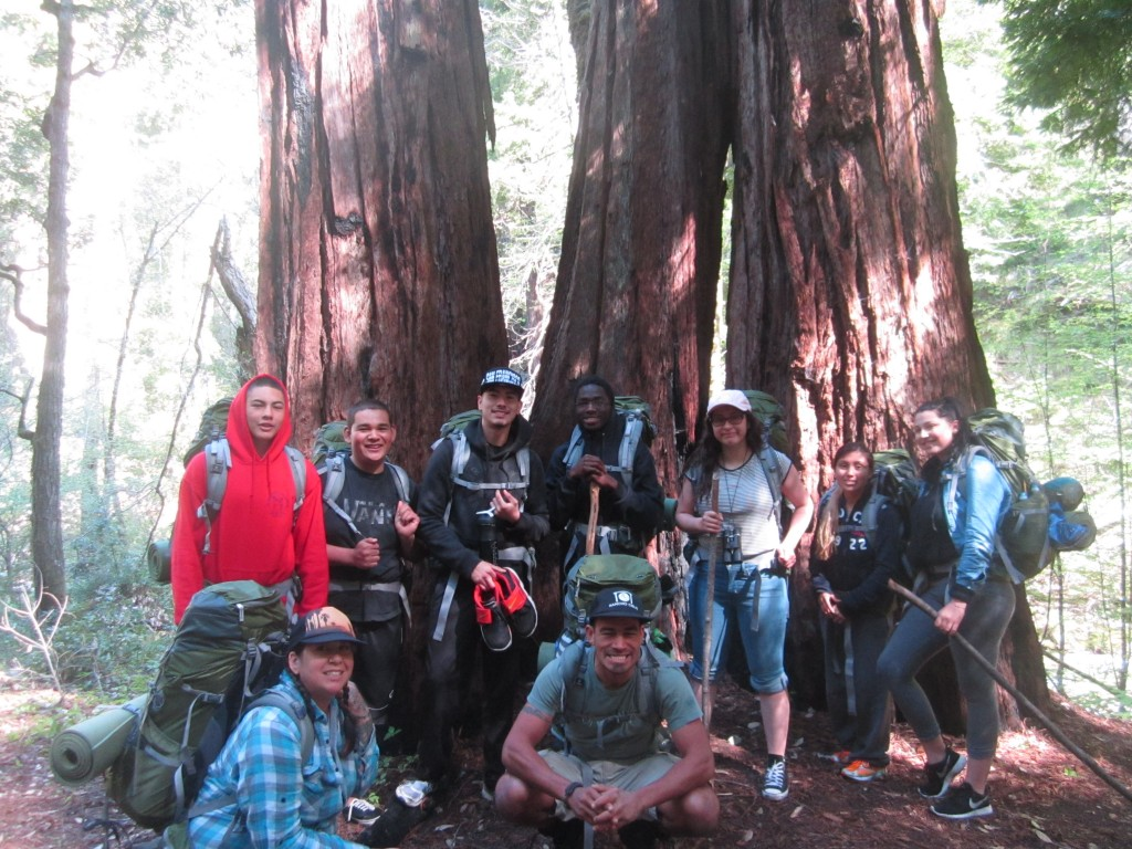 Leaving our camp under the old-growth redwoods